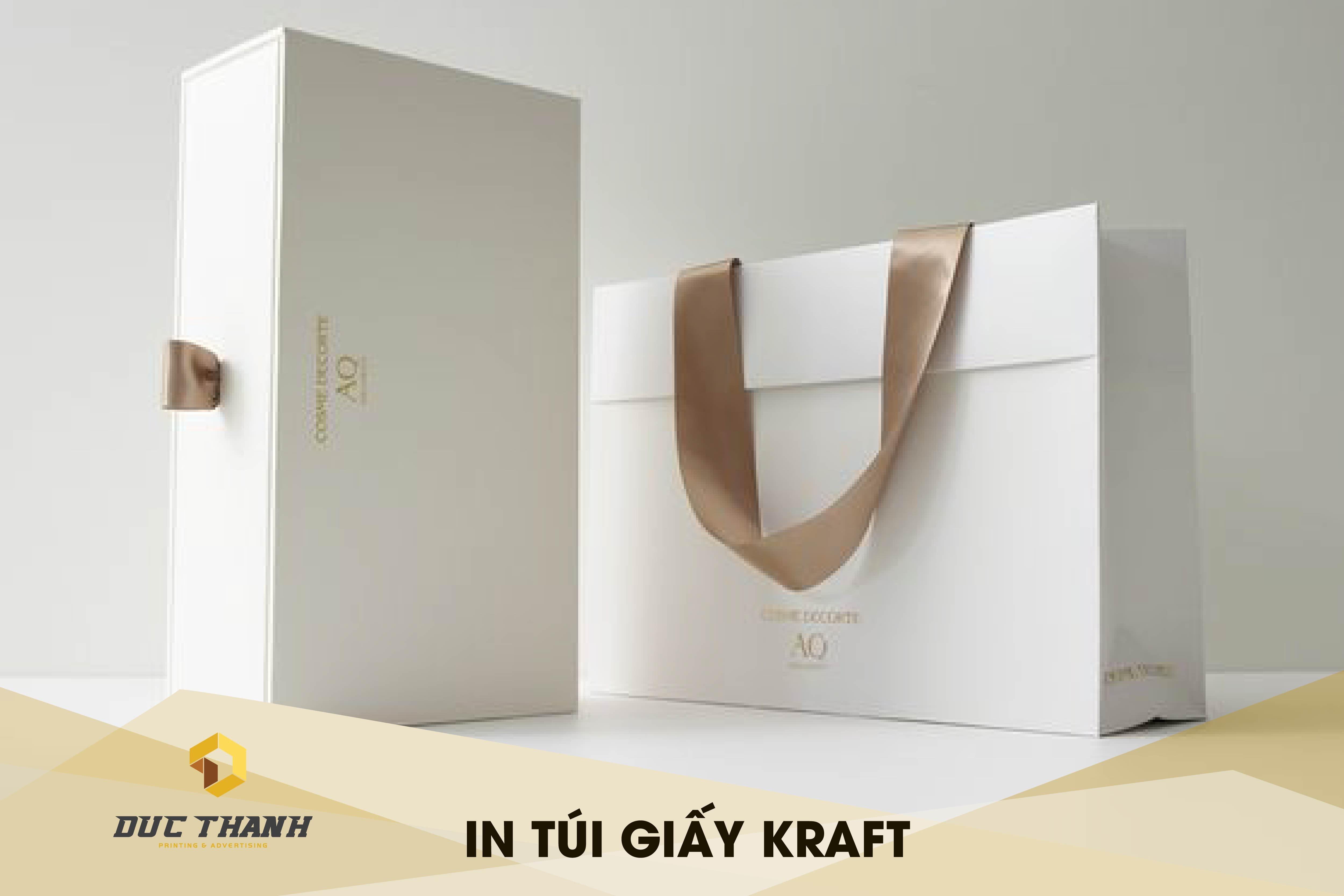 in-tui-giay-kraft-03